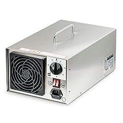 INOX Ozongenerator 10000mg/h