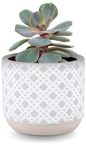 INSPIRELLA Modern Flower Pot Indoor Planter - 5 inch, Glazed Cement, Small Plant Pots for Indoor and Outdoor Display of Succulents and Herbs, Art Deco Design