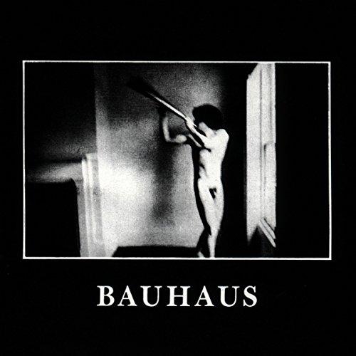 Bauhaus: In the Flat Field (Audio CD)
