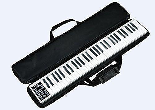 Express Panda Neueste Deluxe Portable 61-Key Elektronische Tastatur mit Aufnahme- und Wiedergabefunktionen - Elektronisches Midi-Piano mit Lautsprecher und Kopfüreranschluss