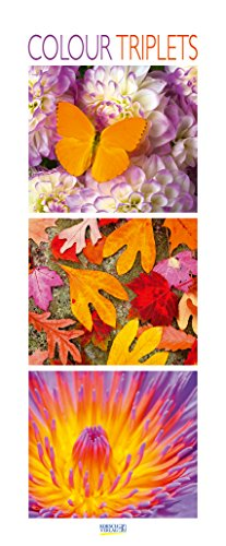 Colour Triplets 206919 2019: Schmaler Wandkalender. Foto-Kunstkalender mit farblich abgestimmten Bildern. PhotoArt Vertikal. 28,5 x 69 cm. Edles Foliendeckblatt.