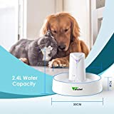 Zoom IMG-1 amzdeal fontana per cani e