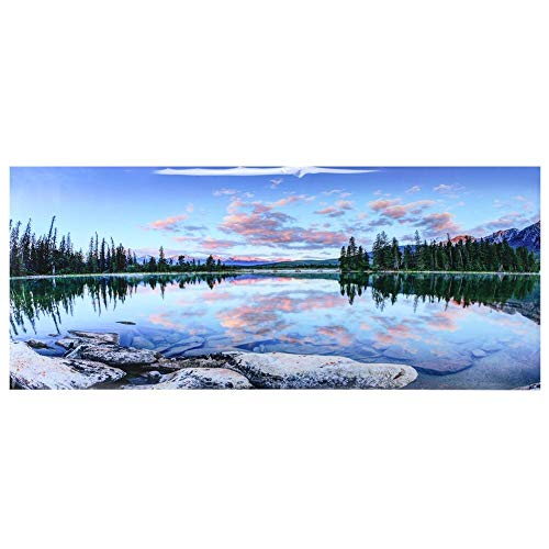 水族館ポスター 水中ポスター 水槽 バックスクリーン 水槽 水族館 魚タンク バックグラウンド 設置・使用簡単 防水・安全(91*50cm)