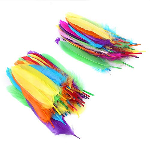 Cikonielf 100Pcs Colored Goose Quill Feathers Colored Feathers Colorful Goose Feathers for DIY Hand Crafts Art Accessories