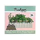 Pusheen Crea tu Propio Jardín de Hierbas Aromáticas