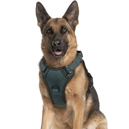rabbitgoo Dog Harness, No Pull Dog Vest Harness with Shock-Absorbing Bungee Straps, Adjustable Dog Walking Harness with Easy Control Handle, Reflective Pet Vest Harness for Large Medium Dogs