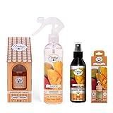 VINTAGE PARFUM. Set di deodoranti per auto e casa, con fragranza al mango e cannella-arancione (Mikado, spray per casa e tessuti, ciondolo auto, spray auto).