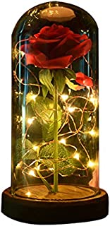 sexyrobot Beauty and The Beast Rose, Enchanted Red Silk Flower with LED Glass Dome for Valentine's Day Mother's Day Christmas Anniversary Birthday Thanksgiving Decoration (1Pcs)