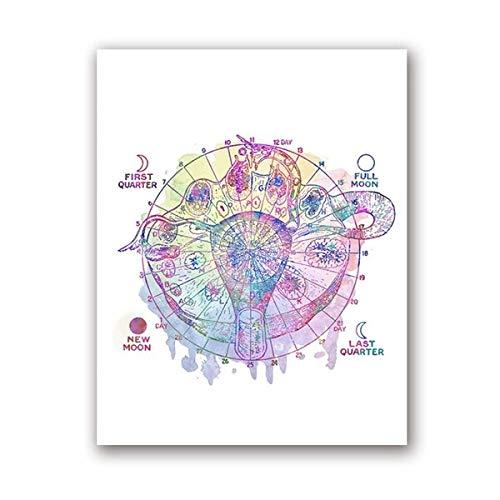 Cartel de ciclo mensual femenino Pintura de lienzo ginecológico Cartel médico Cuadro anatómico Doctor Decoración de oficina 30x40cm