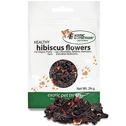 Hibiscus Flower Treat (1.8 oz.) - Healthy Natural Dried Flower Herbivore Treat - Chinchillas, Guinea Pigs, Rabbits, Prairie Dogs, Degus, Hamsters, Rats, Squirrels, Sugar Gliders & Other Small Pets