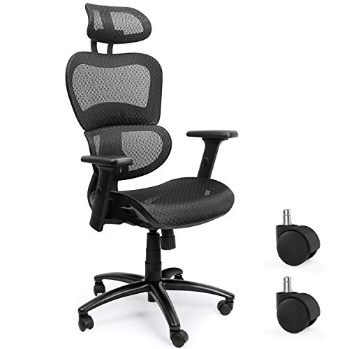 Ergousit Ergonomic Computer Mesh Office Chair with Adjustable Headrest backrest Swivel Executive Chairs with 3D Armrest and Lumbar Support (Black)