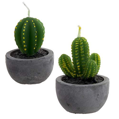 Vidal Regalos Vela Decorativa x2 Cactus Tiesto Cera 6 cm