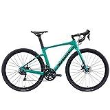 SAVADECK R11 Bicicleta Carbono Gravel de Carretera, 700CX40C Shimano Sora R3000 Velocidad, Freno de Disco hidráulico Bicicleta (Negro-Verde, 54cm)