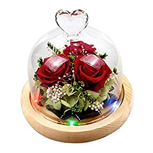 Lurrose Preserved Rose in Glass Dome, Red Rose with LED Lights on Wood Base, Artificial Flowers Creative Gifts for Wedding Birthday Anniversary Valentines Day