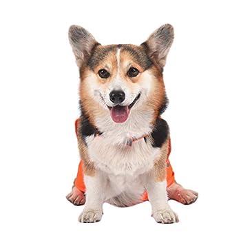 AYKRM Gilet de sécurité réfléchissant pour Chien – Gilet de Chasse imperméable Orange pour Une Meilleure visibilité de Jour (30, Orange)