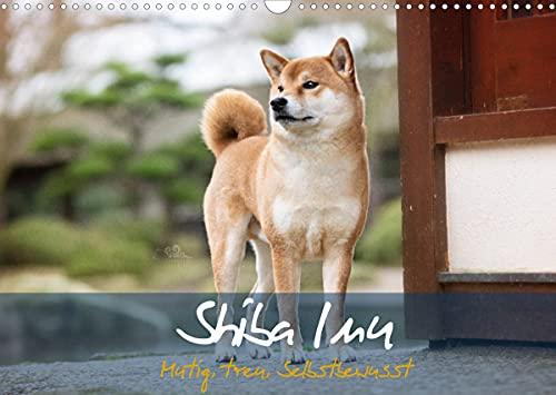 Shiba Inu - mutig, treu, selbstbewusst (Wandkalender 2022 DIN A3 quer)