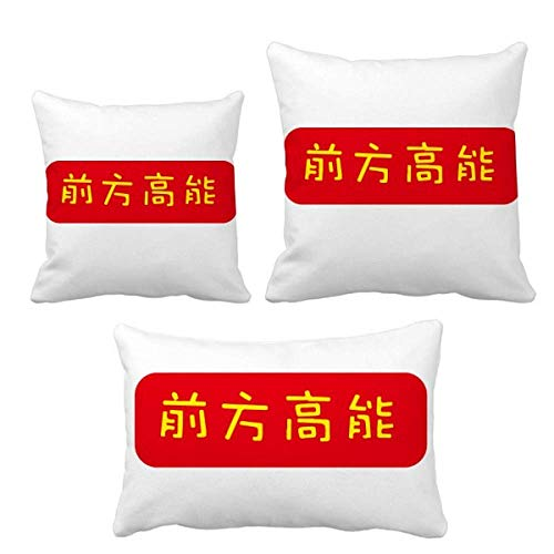 Surprise Later in Chinese to Show Something Inusual - Juego de fundas de cojín para decoración de sofá