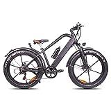 RXRENXIA Bicicletas Eléctricas para Adultos, De Aleación De Magnesio Ebikes Bicicletas Todo Terreno, 26' 350W 36V 13Ah Extraíble De Iones De Litio De La Montaña E-Bici para Hombre