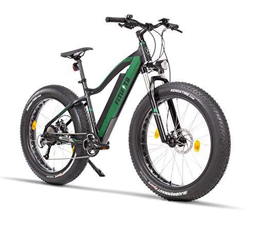 Fitifito FT26 Elektrofahrrad Fatbike E-Bike Pedelec, 48V 250W Bafang Cassette Heckmotor, 48V 13Ah 624Wh Samsung Akku, hydraulische Bremsen, Büchel Scheinwerfer