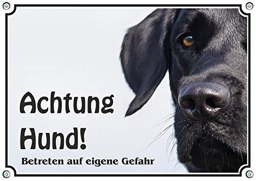 Hundeschild Labrador Retriever schwarz - uv-beständiges Metallschild Fotoschild, DIN A5