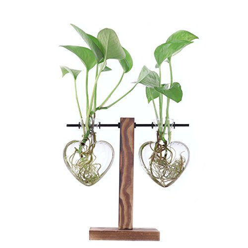 Ivolador Desktop Glass Moden Libra Planter Love-Shaped Vase Hanging with Retro Solid Wooden Stand for Hydroponics Plants Home Garden Wedding Decor (2 Love Vase)