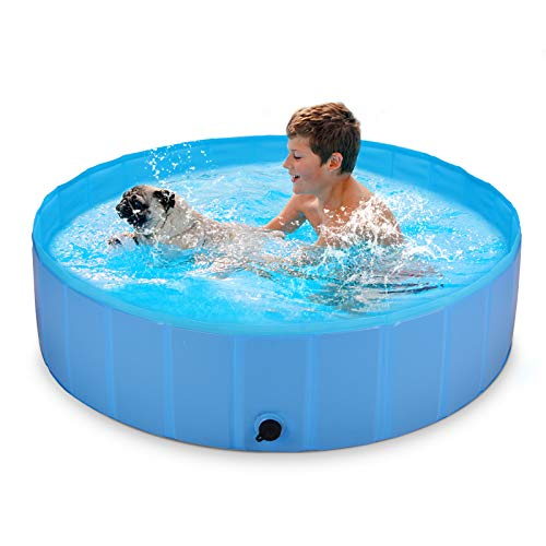 Beedove -   Hundepool für