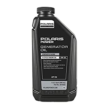 Best polaris generators Reviews