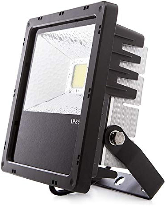 mejor precio verdeice   Foco Foco Foco Proyector LED IP65 Pro 30W 2200Lm 50.000H   blancoo frío  tiendas minoristas