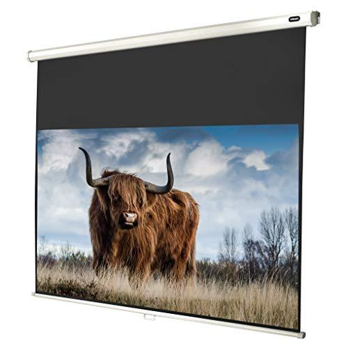 celexon manuell ausziehbare Heimkino- und Business-Beamer-Leinwand 4K und Full-HD Rollo-Leinwand Economy - 200 x 113 cm - 16:9 - Gain 1,0