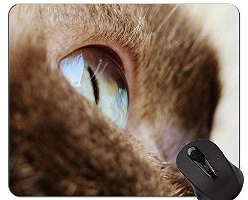 Alfombrillas para ratón, Alfombrilla para Gato británica de Pelo Corto Antideslizante, Alfombrilla para Gato con Borde Cosido