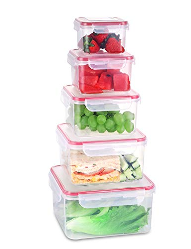 Fresh Friend Food Storage Containers with Lids Airtight, Plastic Leakproof Lunch Containers BPA Free, Stackable Kitchen Freezer Storage Containers for Food, Christmas Gift, Set of 5, Square