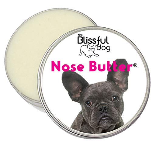 The Blissful Dog Blue French Bulldog Unscented Nose Butter - Dog Nose Butter, 1 Ounce