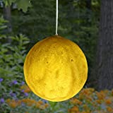 The Lakeside Collection Hanging Solar Moon Light with Attached Hanging Wire and On/Off Switch