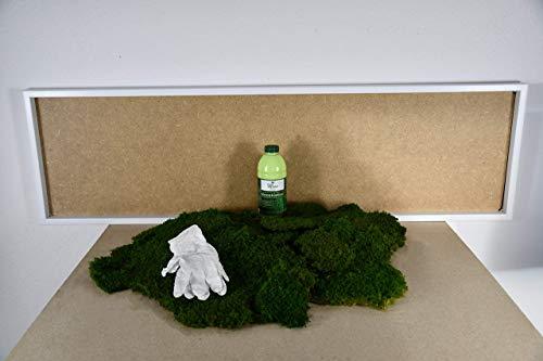 DIY Moosbild 100% Flachmoos, Moosbild selber Machen, Wandbild selber kleben, Do it Yourself Set Moos kleben Wanddeko selbst herstellen in versch. Maßen