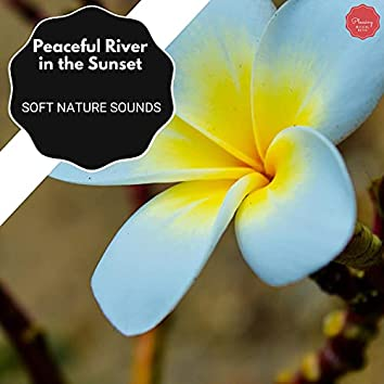 Peaceful River In The Sunset - Soft Nature Sounds