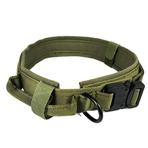 Homiki Hundehalsband Pet Fest Kragen Verstellbare Nylon-Halsband für Haustier-Nylon ausbruchsicher mit D-Ring für großen Hund Grün XL Welpen Zubehör