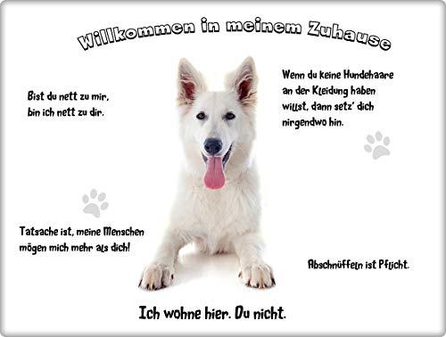 Merchandise for Fans Blechschild/Warnschild/Türschild - Aluminium - 20x30cm - - Willkommen in Meinem Zuhause - Motiv: Weißer Schäferhund liegend - 12