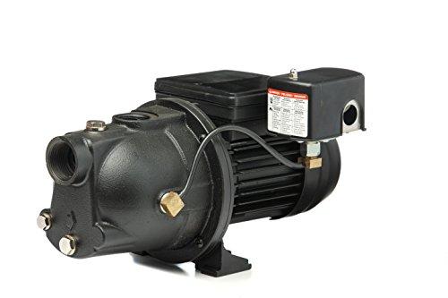 Red Lion PWJET50 Cast Iron Shallow Well Jet Pump Wells up to 25 Feet , Black , 0.5 HP - 97080501