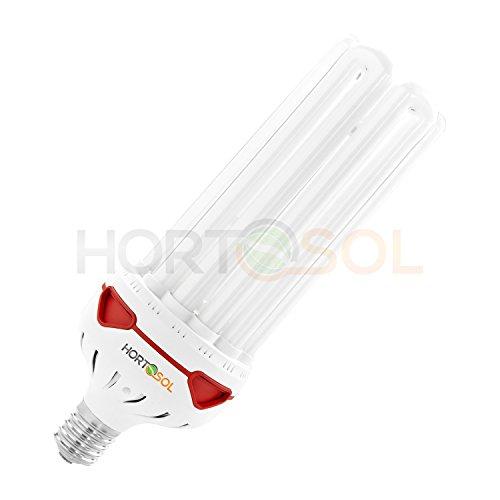 HORTOSOL 150w 6400k Wuchs ESL Energiesparlampe