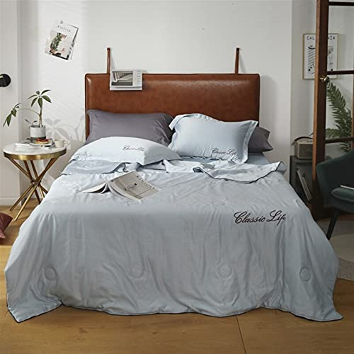YYGQING Edredón lavable de seda de hielo para verano, aire acondicionado, edredón para cama, sofá para niños, adultos, reina y verano, fresco (color: gris azul, tamaño: 200 x 230 cm)