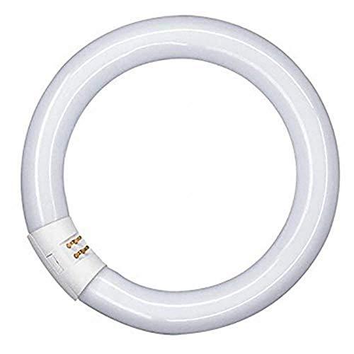 Osram Lampadina fluorescente attacco GR10q, 32W, luce neutra, circolare, vetro