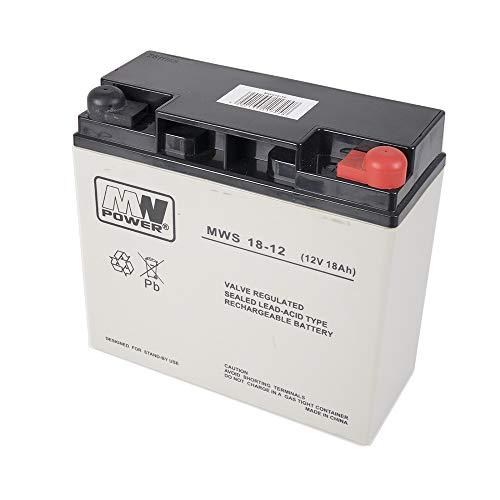 potente para casa PNI PNI-ACC1812 ACC1812 Batería de gel MW18-12S 12 V / 18 Ah, gris / negro, 18,1 x 16,7 x 7,7 cm