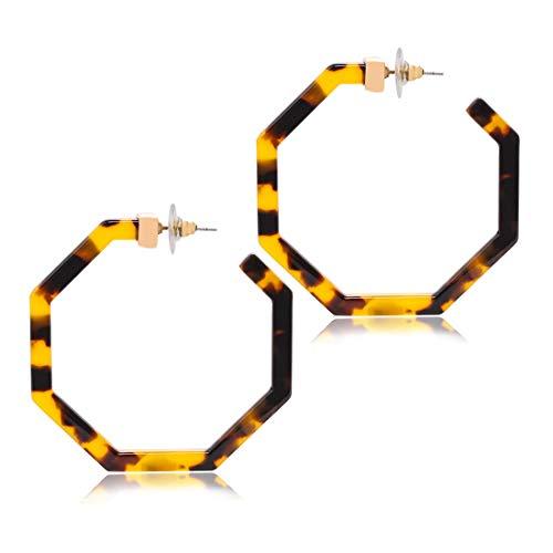 Acrylic Hoop Earrings Upgraded Geometric Resin Earrings Delicate Acetate Stud Dangle Earrings for Women Girls
