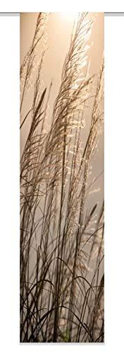 Home Fashion Caruso Schiebevorhang Digitaldruck, Stoff, Natur, 245 x 60 cm