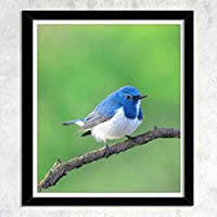 テーマ - 青い鳥(2),木枠壁画、壁飾り画、版画、壁のポスター、家の装飾、壁の装飾、部屋の装飾(28x23CM)「額縁つき」