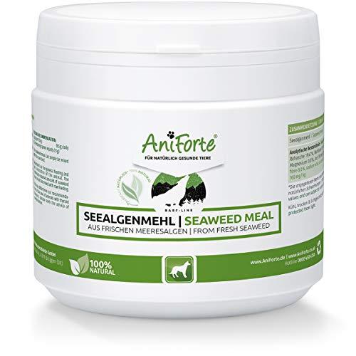 AniForte Harina de Algas para Perros 250g - Ayuda a la glándula tiroidea y la digestión, Mejora la higiene Oral y Optimiza el Pelaje y la Piel. Suplemento para dietas crudas Tipo Barf