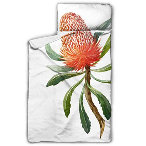 Australische Orange Blumen Banksias Schlafsäcke für Kinder Nickerchen Matte Reisen mit Decke und Kissen Rollup Design ideal für Vorschule Kindertagesstätte Sleepovers 50