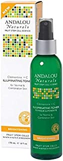 Andalou Naturals Illuminating Toner Brightening Clementine Plus C 6 fl oz