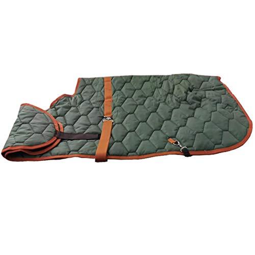 Pet Supplies Manteau d'hiver Poney, Couverture de Cheval Coupe-Vent extérieure réglable, Couverture de Cheval Chaude Poney imperméable et antigel