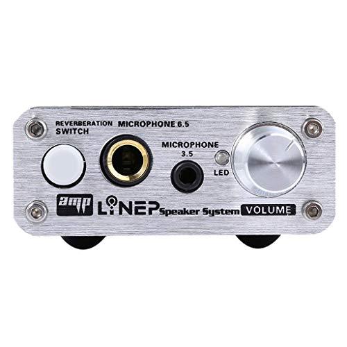 Mikrofonverstärker, Doppel Mikrofon Eingang/Doppel Karaoke/perfekte Geräuschreduzierungsfunktion/Treiber-freies Design